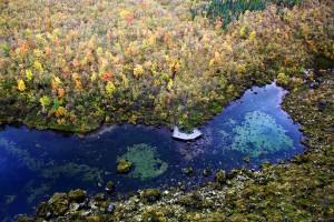 canyon d'Asbyrgi
